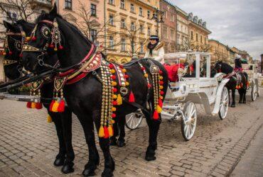 Pozycjonowanie w Krakowie